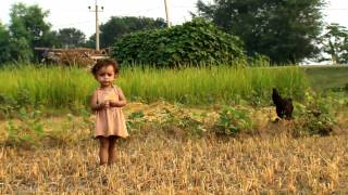 Download FAO in Nepal - Documentary version part 1/2 Video