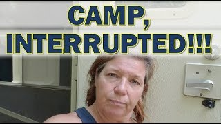Download What Causes me to Pack Up and Leave a Free Camp in Ocala National Forest? Video