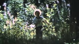 Download Meil aiaäärne tänavas (filmist Kevad südames) Video