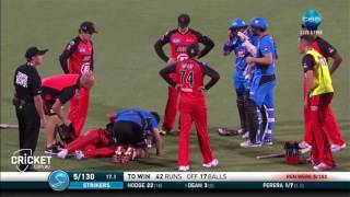 Download Nevill struck in face by bat Video