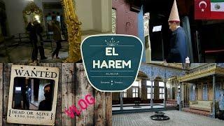 Download EL HAREM DEL SULTAN + Guardia Pregunton   MEXICANA EN TURQUIA   Vlog Video