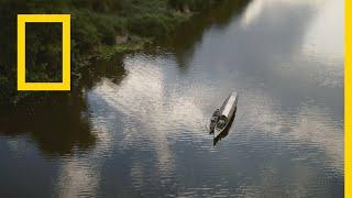 Download الصيد الأسطوري: عملاقة الأدغال | ناشونال جيوغرافيك أبوظبي Video