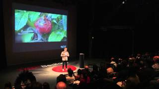 Download Biomimicry for better design | Andy Middleton | TEDxBedford Video