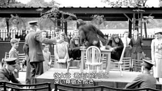 Download 『エリザベス2世 知られざる女王の素顔』(字幕版) Video