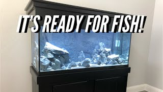 Download CRYSTAL CLEAR Tank FAST! | Jay Wilson Video