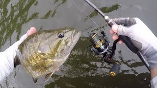Download My NEW BEST Finesse Fishing Bass Rod Video