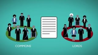 Download Different types of Parliamentary Bill Video
