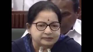 Download Jayalalitha Angry Speech Against Stalin in Assembly - Trending Video