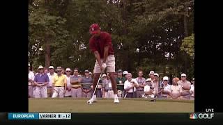 Download Tiger Woods Swing Analysis: 1996 Video