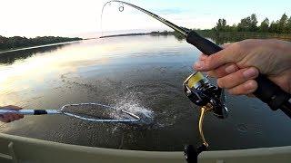 Download Вот она правда о рыбалке в Астрахани! Вот Как Здесь Клюет! Рыбалка на спиннинг. Video
