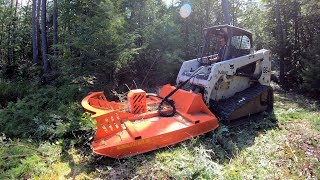 Download Mowing an overgrown woods road Video