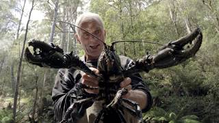 Download Il parvient à pêcher une écrevisse géante ! - Jeremy Wade, en eaux troubles Video