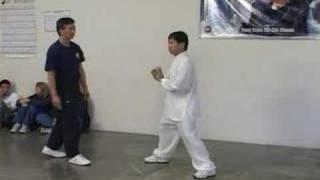 Download Yang Family tai chi push hands Video