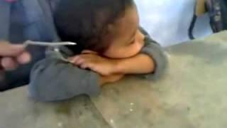 Download تلميذ المجد Video