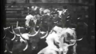 Download Cattle Driven to Slaughter Video