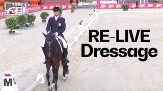 Download RE-LIVE | FEI Strzegom Horse Trials | Dressage CI-short 2* part 2 - Arena A | Strzegom (POL) Video