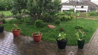 Download Градины размером с орех - непогода в столице и пригороде Video