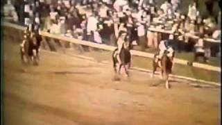 Download ″SECRETARIAT″ Greatest Race Horse of All Time - Kentucky Derby Preakness Belmont Stakes 1973 Video Video