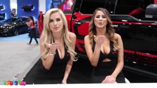 Download SEMA Girls 2016 - Best of... - Las Vegas Video