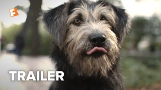 Download Lady and the Tramp Trailer #2 (2019) | Movieclips Trailers Video