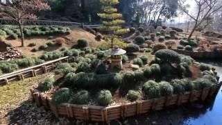 Download 4K-View: Scenic Japan - UHD SlideShow-04 2160p - Gentle Worship (Mostly Instrumental) Video