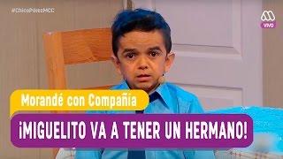 Download ¡Miguelito va a tener un hermano! - Morandé con Compañía 2017 Video