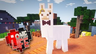 Download DAPPER LLAMAS & FAIRY LIGHTS - ONE LIFE MINECRAFT SMP (EP.7) Video