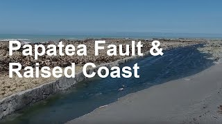 Download Papatea Fault and Raised Coast Video