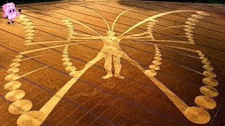 Download 10 Amazing Crop Circles That Have Left Authorities Stunned Video