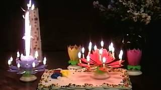 Download Lotus Flower Musical Birthday Candles Video