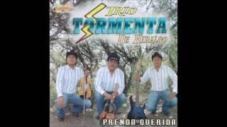 Download Trio Tormenta de Hidalgo - Amores Que Van y Vienen Video