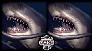 Download VR VIDEOS 3D SBS Underwater for VR BOX 3D not 360 VR Video