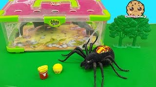 Download Shopkins Visit Interactive Attack Wild Pets Exclusive Spider In Cage Habitat at Zoo - Cookieswirlc Video