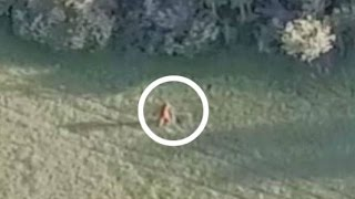 Download NEW BIGFOOT/SASQUATCH CREATURE DISCOVERED 2017 Video