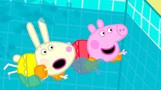 Download Peppa Pig en Español Episodios completos   Peppa Pig ¡A Nadar!   Dibujos Animados Video