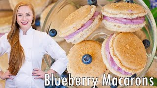 Download Blueberry Cheesecake Macarons Video