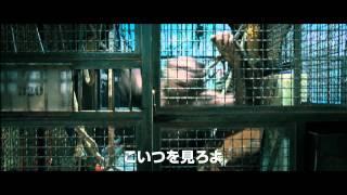 Download 映画『猿の惑星:創世記(ジェネシス)』予告編 Video
