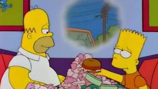 Download Homer - Wie man schnell fett wird.avi Video