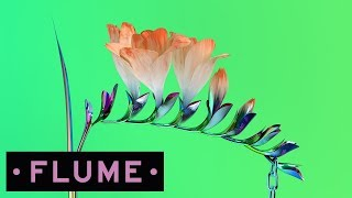 Download Flume - TRUST feat. Isabella Manfredi Video