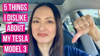 Download 5 Things I Dislike About My Tesla Model 3 Video