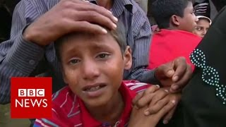 Download Rohingya Muslims 'hated and hounded from Burmese soil' BBC News Video