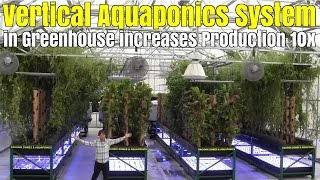 Download Vertical Aquaponics System use Bamboo Towers in Greenhouse to Increase Production 10x Video