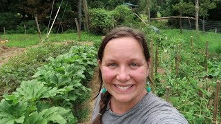 Download HOMESTEADING Made Me RICH! Video
