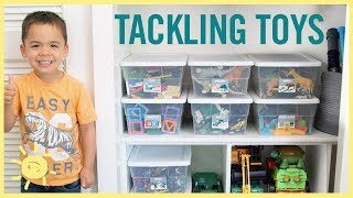 Download ORGANIZE | Tackling the Toys! Video