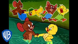 Download Tom & Jerry | Best of Jerry and Little Quacker | Classic Cartoon Compilation | WB Kids Video
