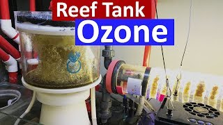 Download Reef Tank Ozone - Crystal Clear Water in The Marine Aquarium using a ozone generator Video