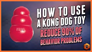 Download How to Use a Kong Dog Toy - 90% of Behavior Problems Eliminated Video