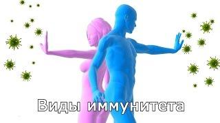 Download Виды иммунитета Video
