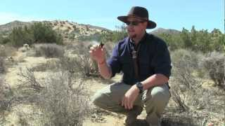 Download How Native Americans Transfered Fire, Survival Skills Video