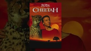 Download Cheetah Video